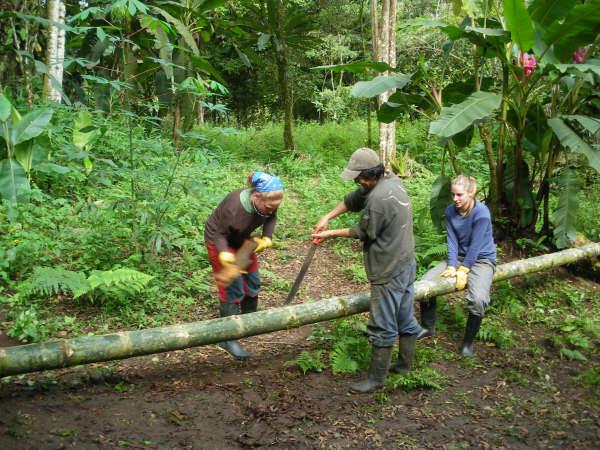 conservation islas galapagos