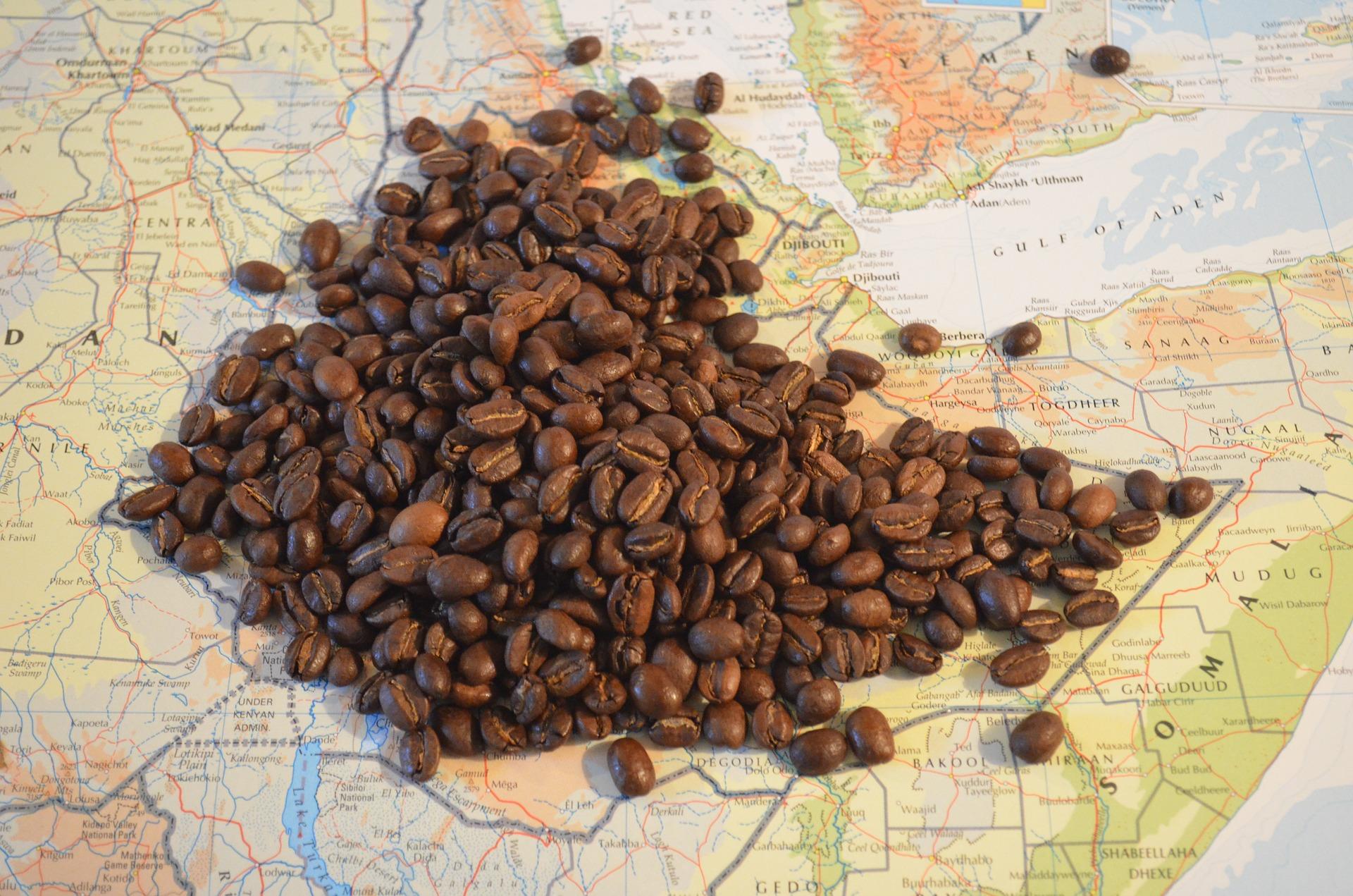 20-01-16 etiopia cafe