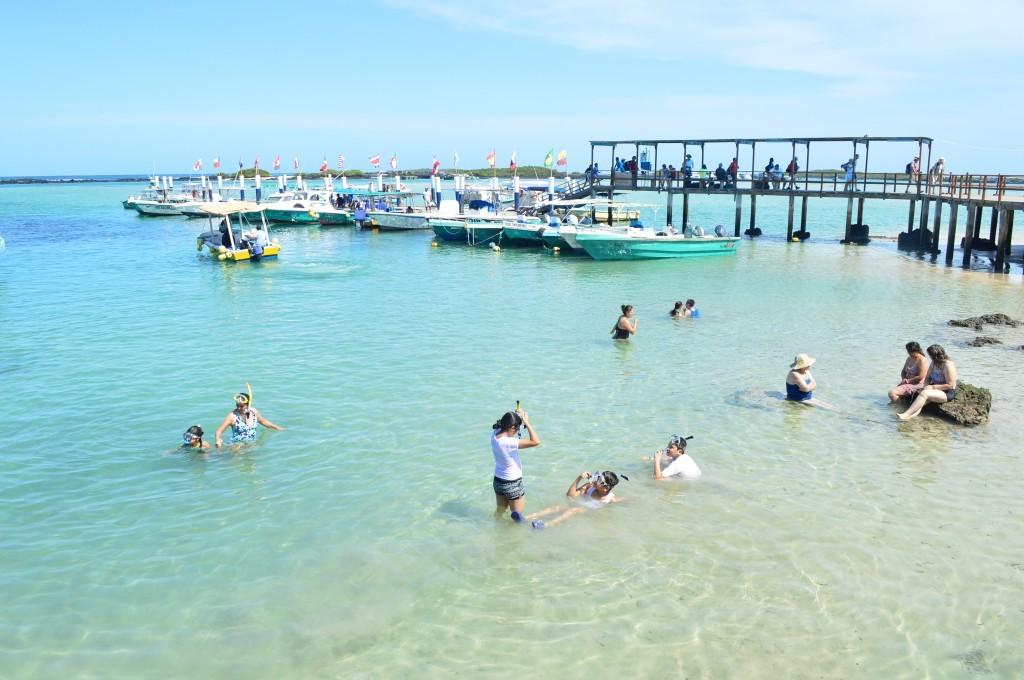 las mejores islas en galápagos