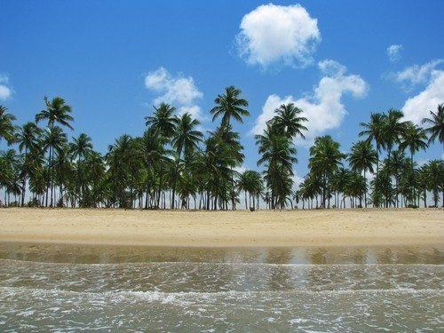 descubre las mejores playas de brasil
