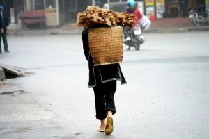 vietnam-896307_960_720