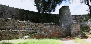 gran-zimbabwe