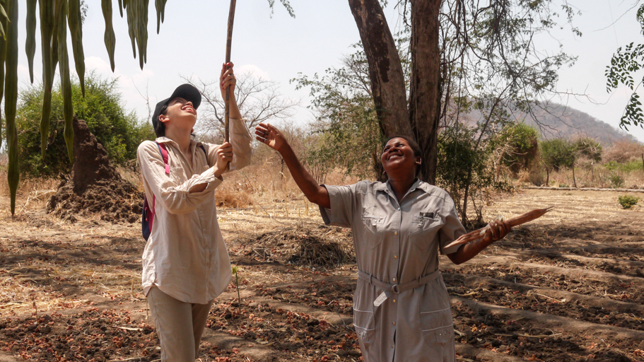 Malawi Medio ambiente