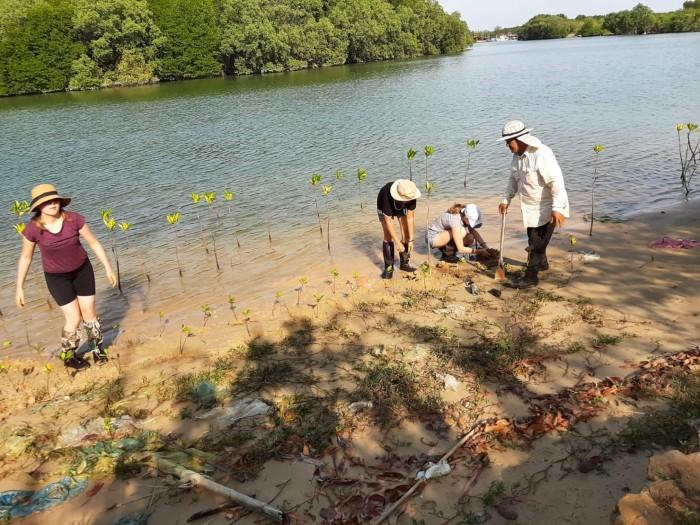 Limpieza playas voluntariado