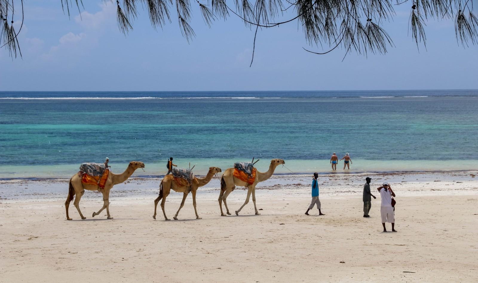 playas kenia voluntariado