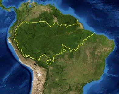 voluntariado en america amazonia