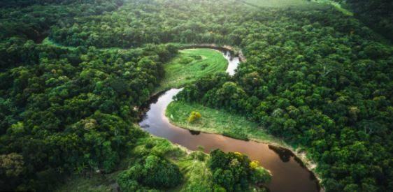 voluntariado por america amazonas